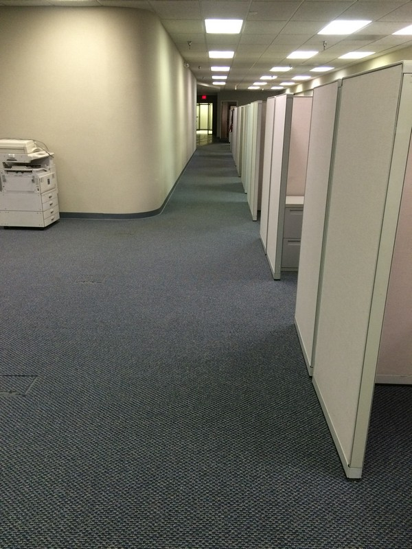 office carpet cleaning - Metro Detroit Michigan - A Klein Co.